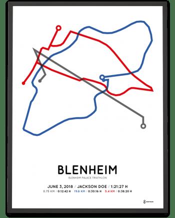 2018 Blenheim Palace triathlon routemap poster
